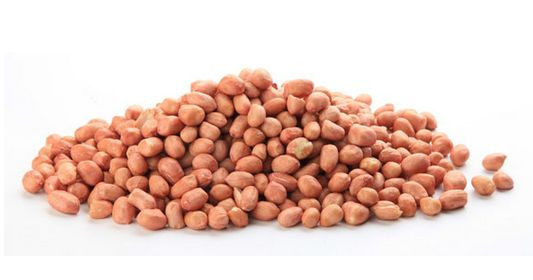 Study on New Technology of Peanut Seed Coating by Microwave Heating
