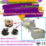 Good Efficiency Professional Designed microwave fungus and mushrooms drying machine
